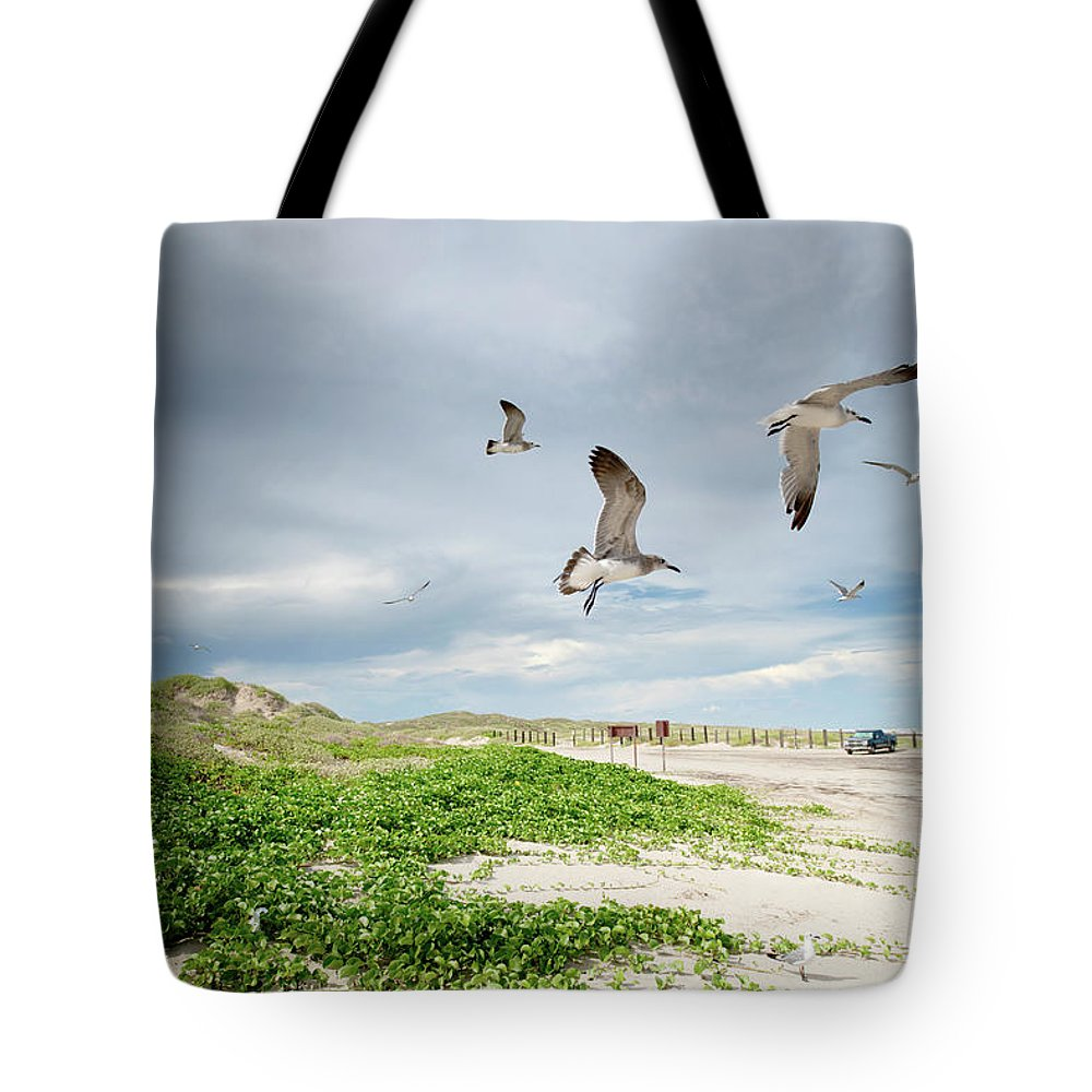 Scenics Tote Bag featuring the photograph Seagulls In Flight At North Padre by Olga Melhiser Photography