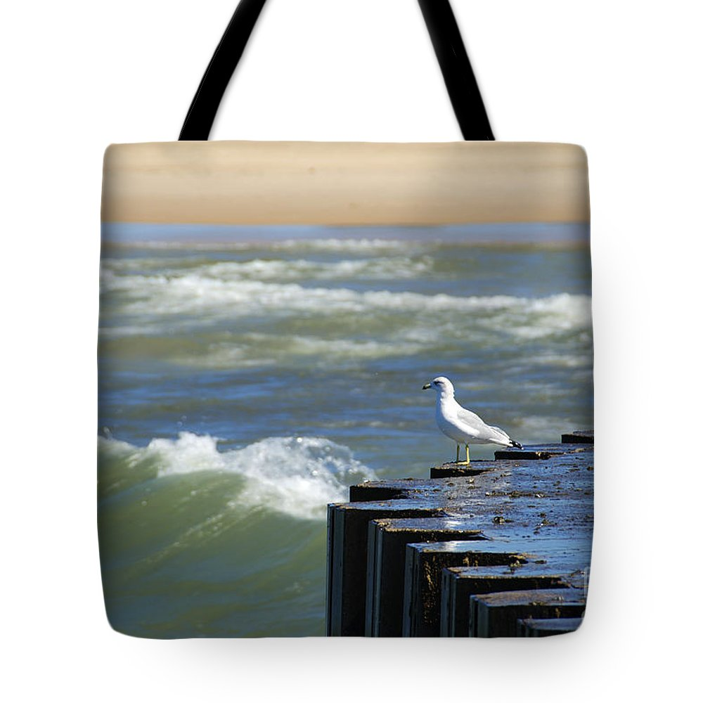 Photography Tote Bag featuring the photograph Seagull's Perch by Jackie Farnsworth