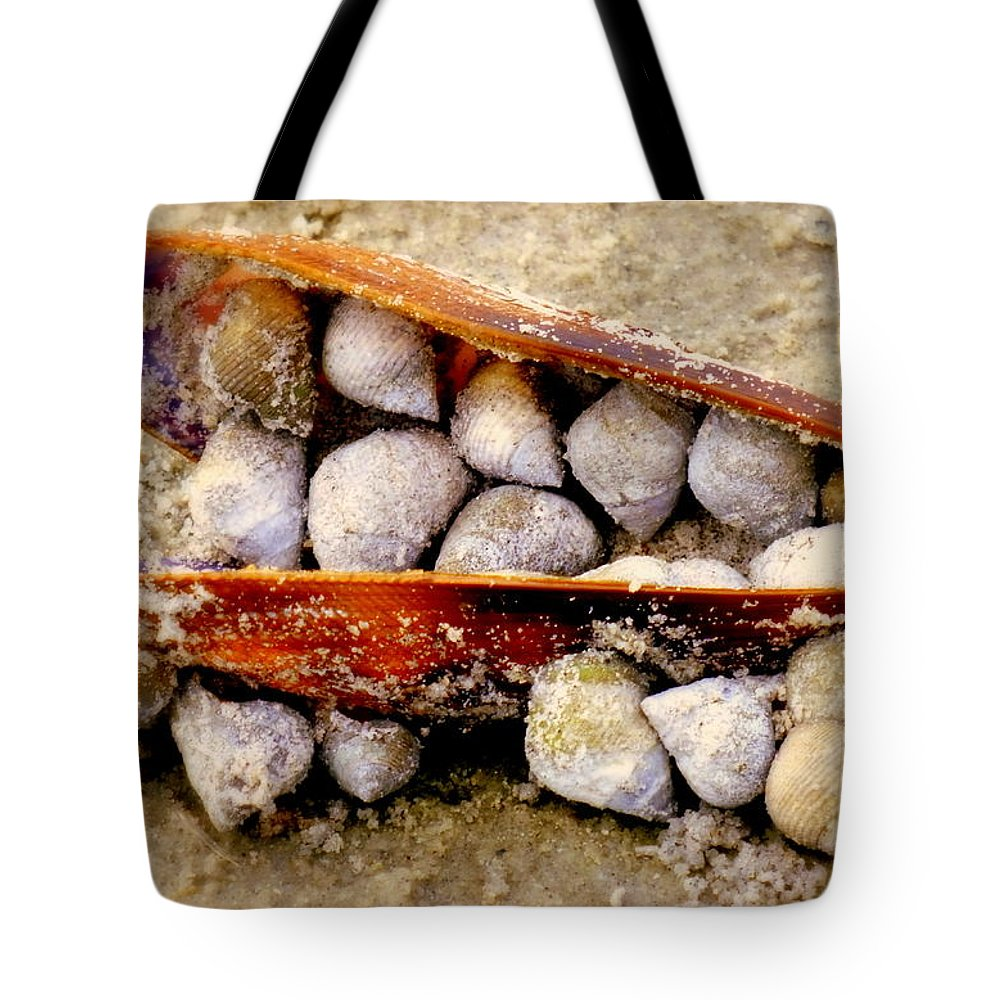 Shells Tote Bag featuring the photograph Seashell Reunion by Karen Wiles