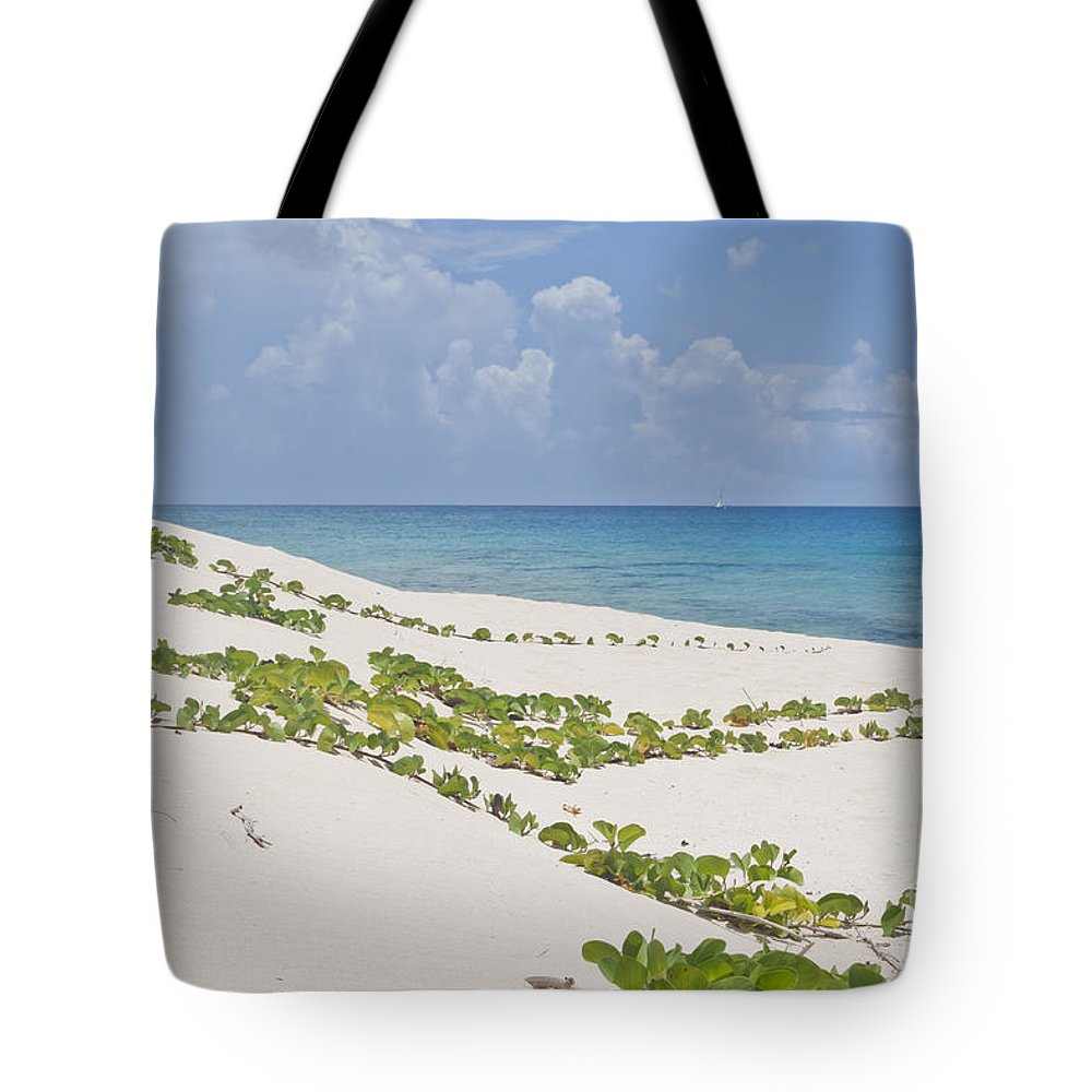 Anguilla Tote Bag featuring the photograph Seashore by F Innes - Finesse Fine Art