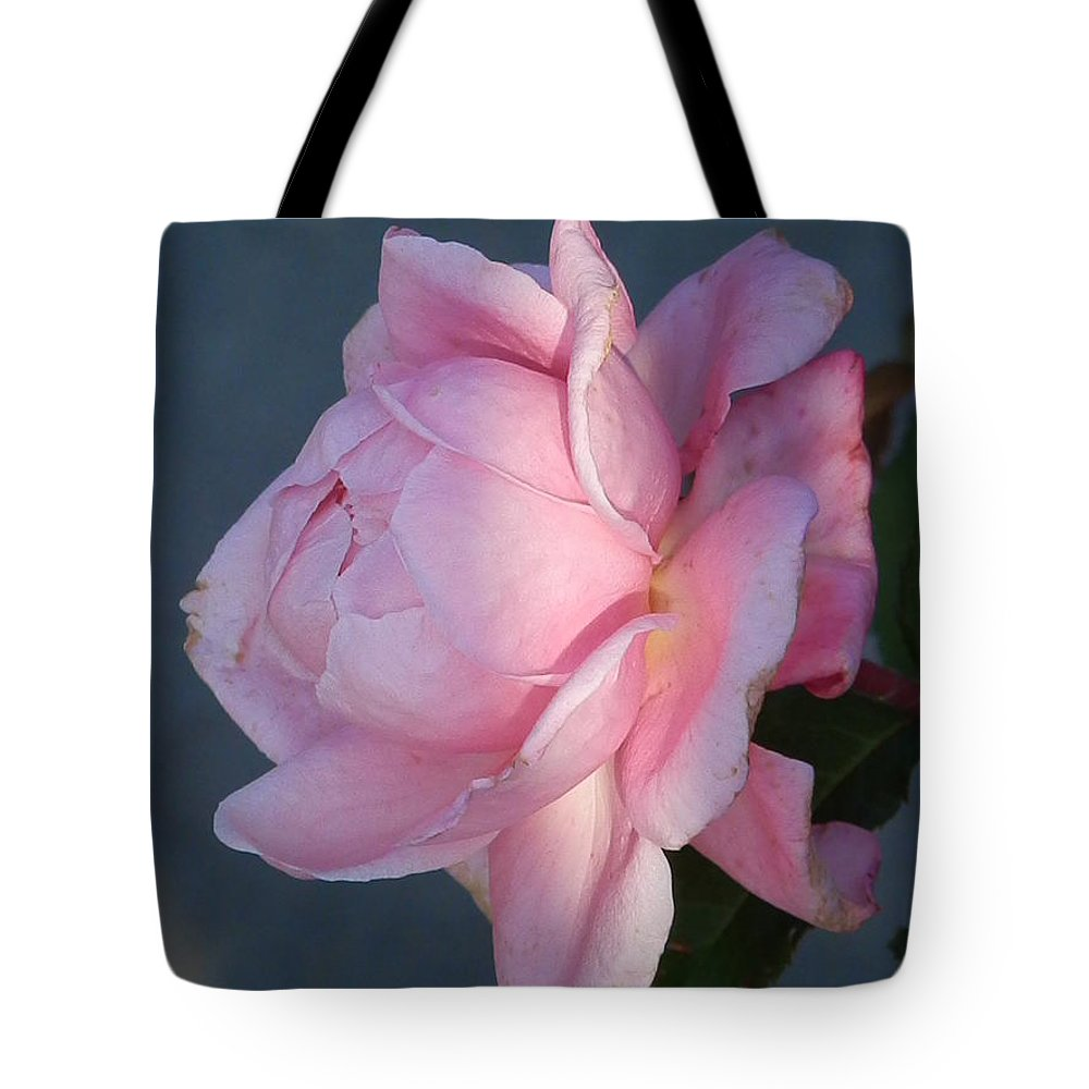 Diane Dimarco Art Tote Bag featuring the photograph Seasons End by Diane DiMarco