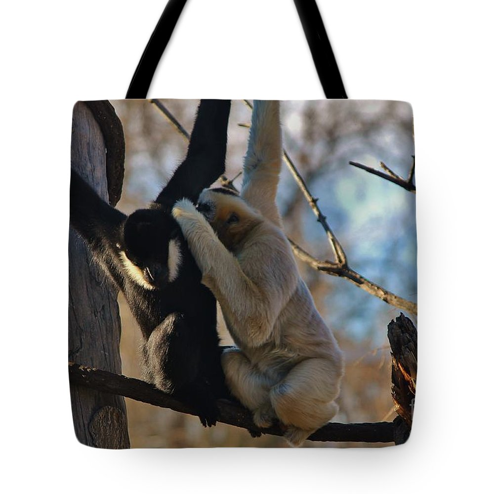 Monkey Tote Bag featuring the photograph Secrets by Tonya Hance