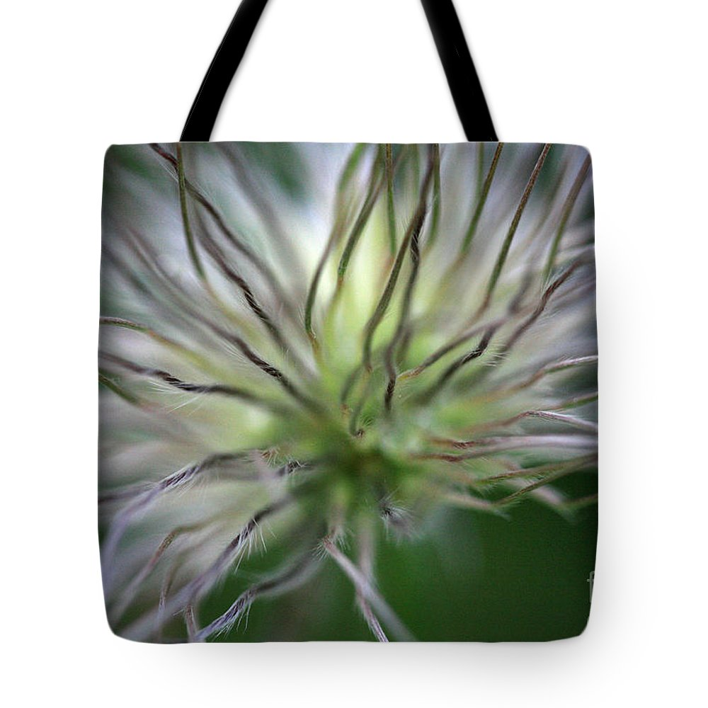 Botany Tote Bag featuring the photograph Seed Head by Deborah Benbrook