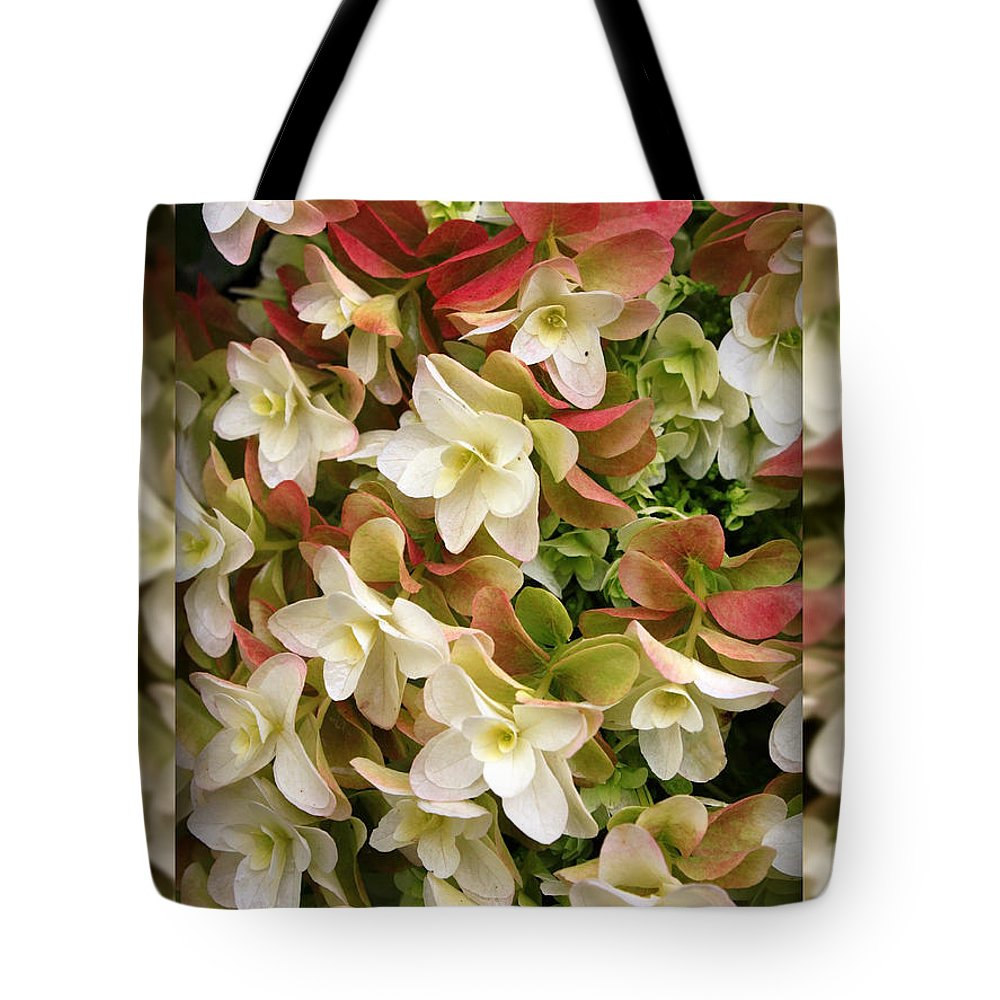 Hydrangea Tote Bag featuring the photograph Seeing Double - Hydrangeas by Carol Groenen