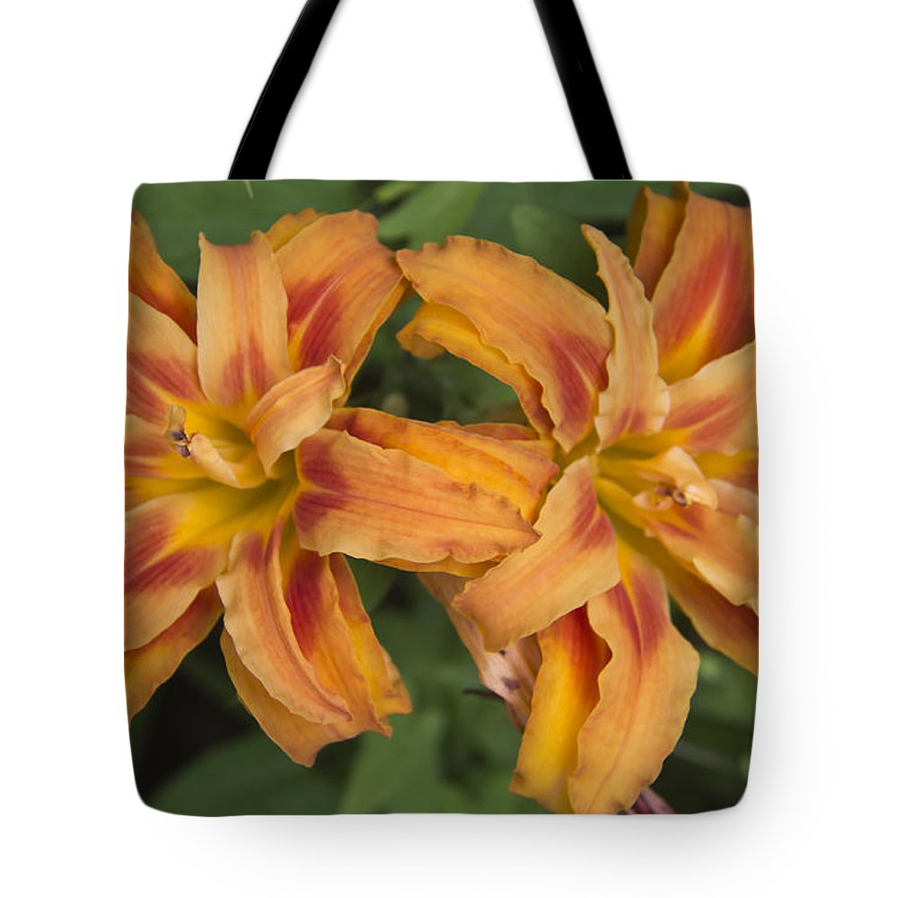 Daylily Tote Bag featuring the photograph Seeing Double by Teresa Mucha