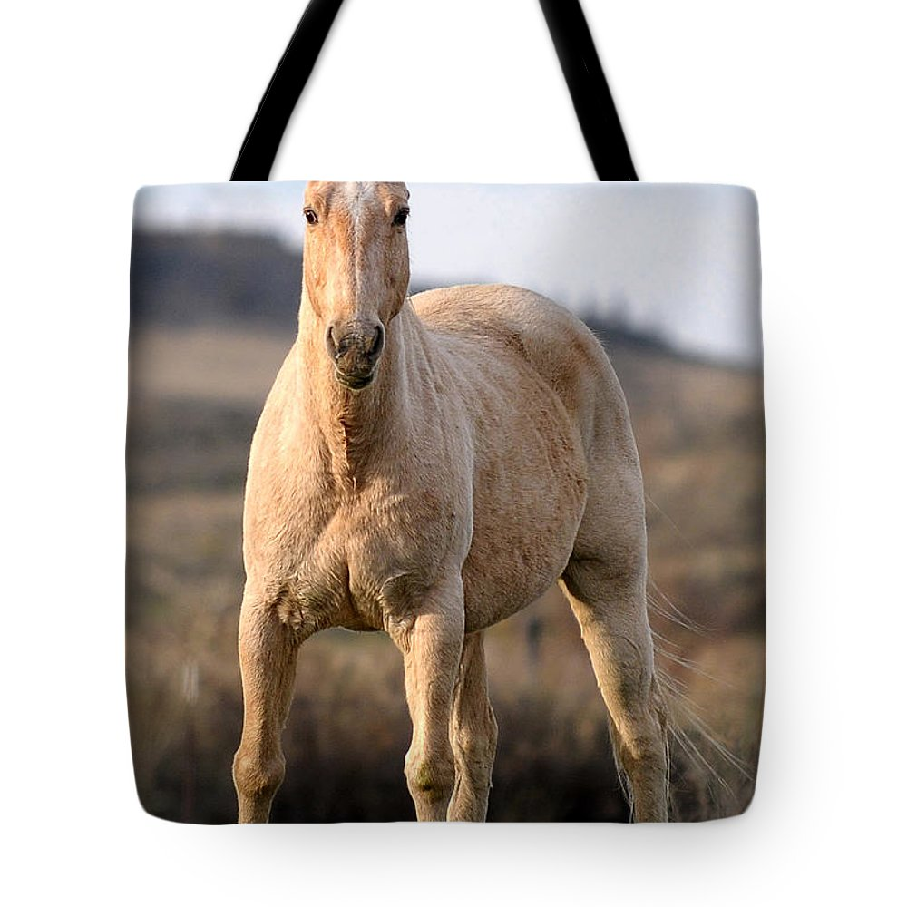 Horse Tote Bag featuring the photograph Seeing Eye-to-eye by Liz Mackney