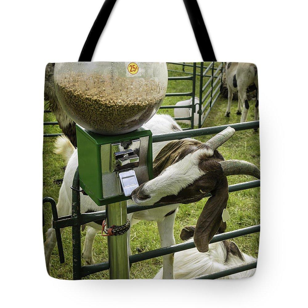 Goat Tote Bag featuring the photograph Self Serve Goat by LeeAnn McLaneGoetz McLaneGoetzStudioLLCcom