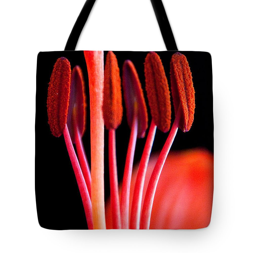 Lily Tote Bag featuring the photograph Sentinals by Dana Kern