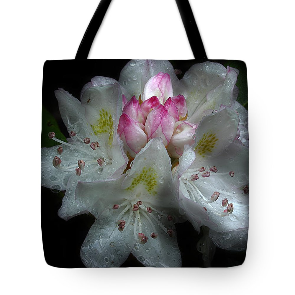 Fresh Rhododendron Tote Bag featuring the photograph Serenade Of Twilight by Michael Eingle