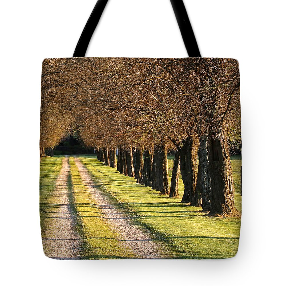 Lane Tote Bag featuring the photograph Serene Lane by Sharon Horn