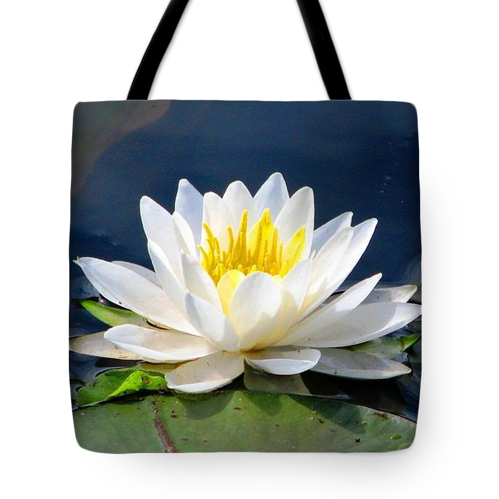 Water Lilies Tote Bag featuring the photograph Serenity On The Lily Pond by Angela Davies