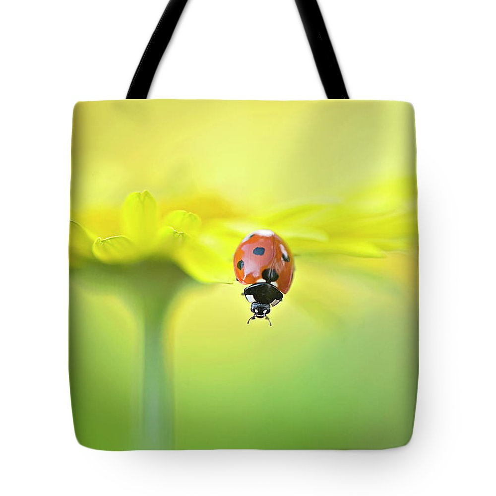 Buckinghamshire Tote Bag featuring the photograph Seven Spot Ladybird On Yellow Flower by Jacky Parker Photography