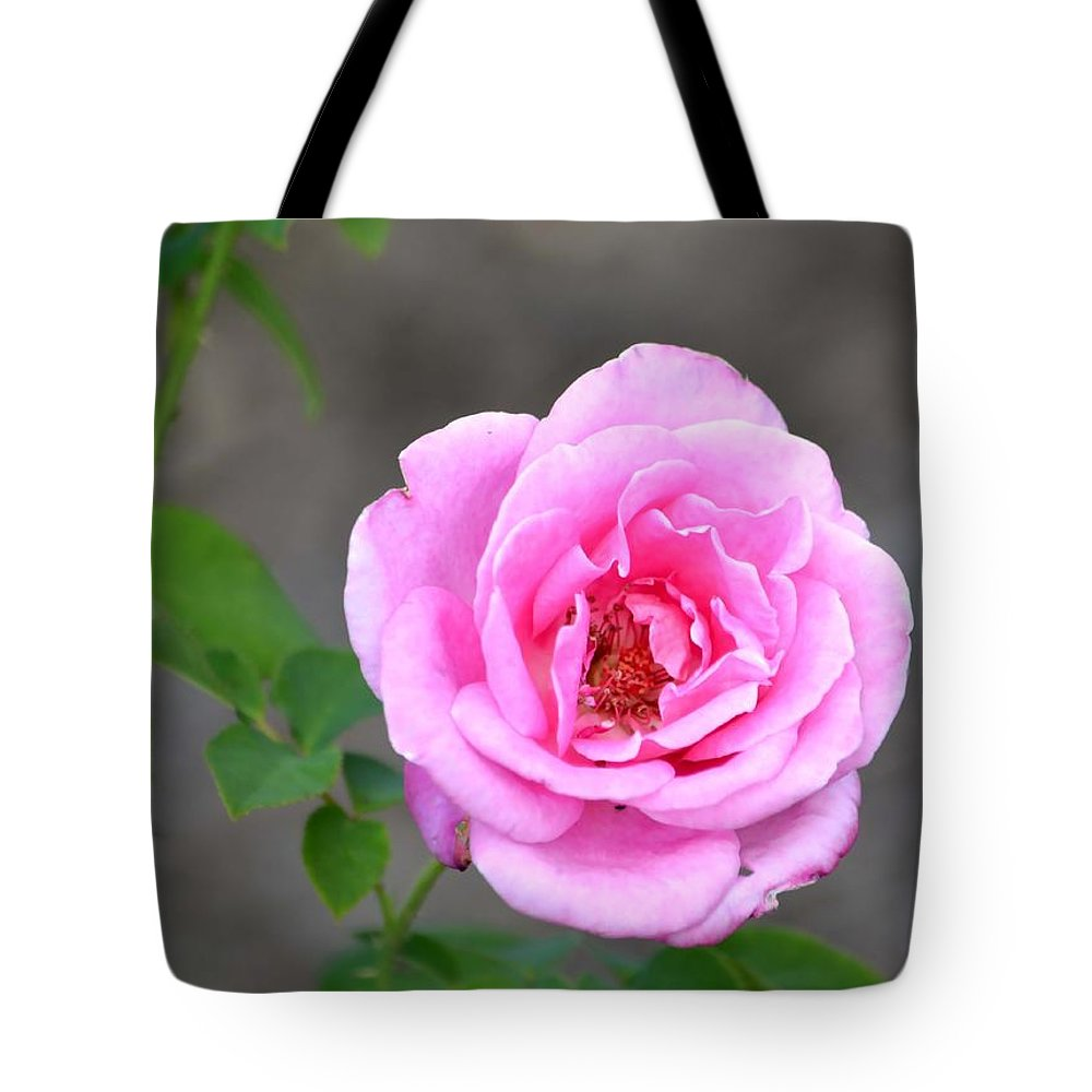 Rose Tote Bag featuring the photograph Shades Of Pink by Deena Stoddard
