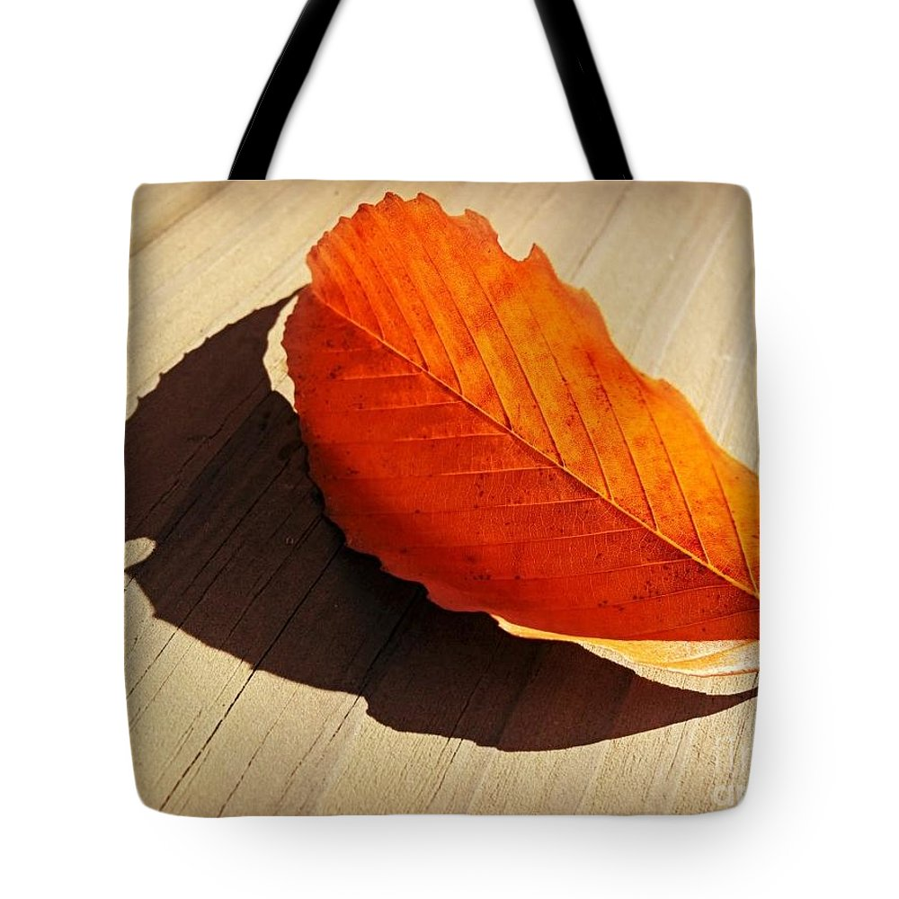 Leaf Tote Bag featuring the photograph Shadow Cast By Leaf by Beth Ferris Sale