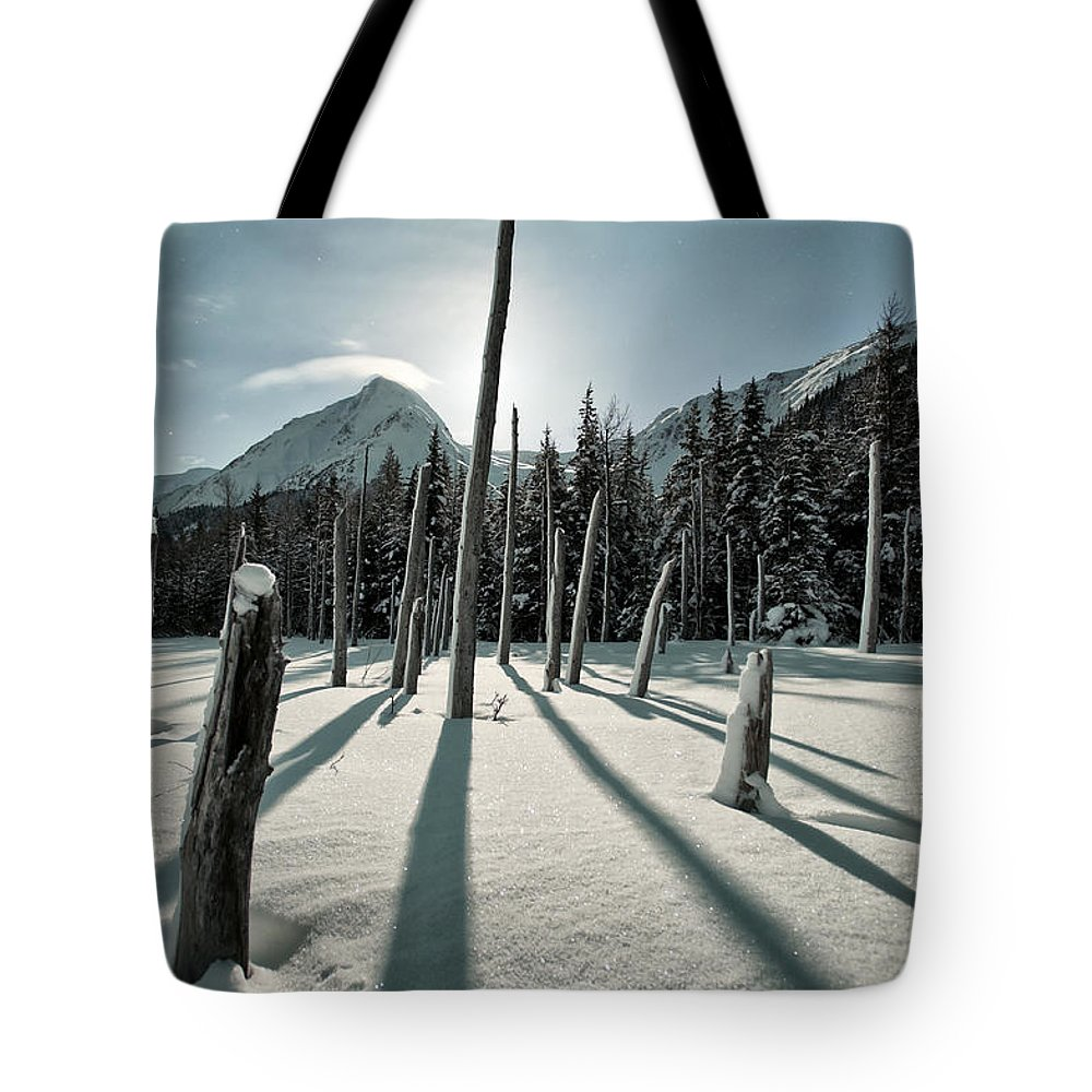 Aurora Tote Bag featuring the photograph Shadow Of Former Selves by Ted Raynor