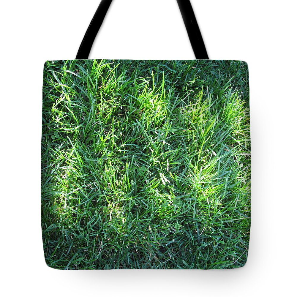 Garass Tote Bag featuring the photograph Shadow On The Grass by Tina M Wenger
