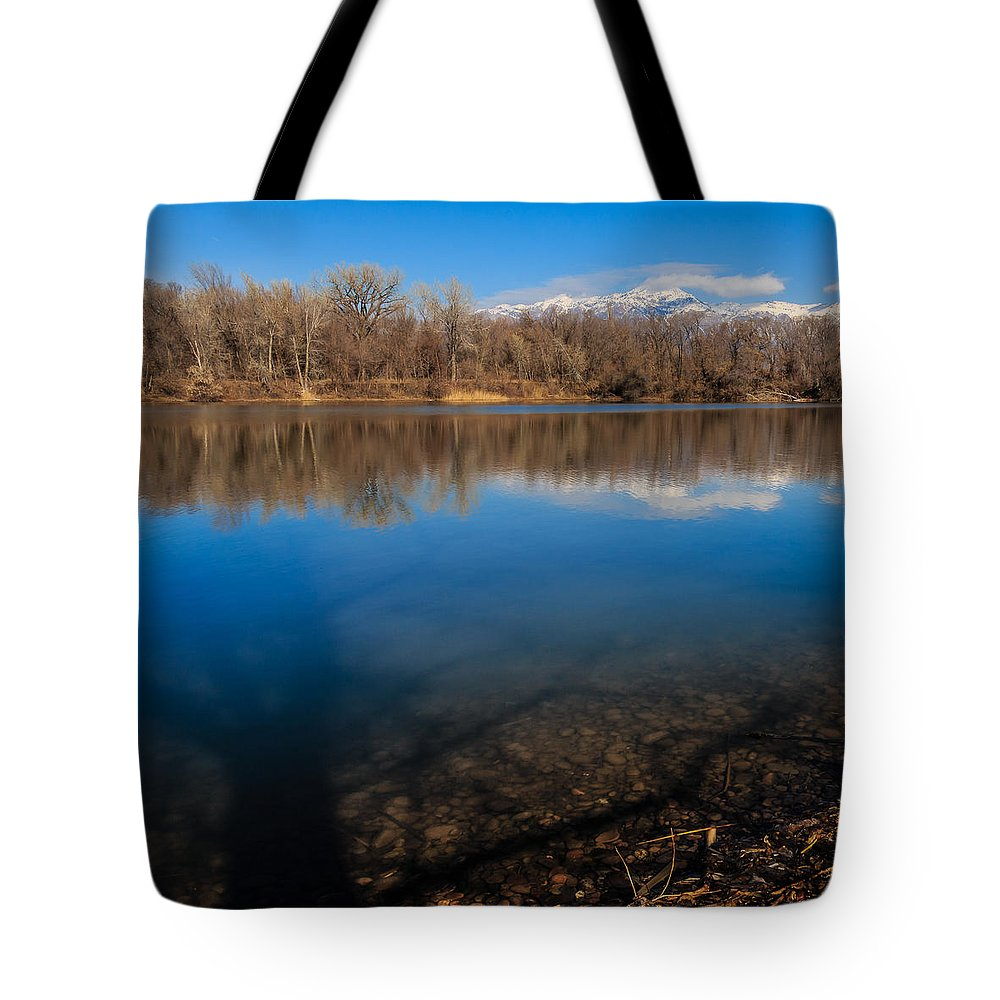Gigimarie Tote Bag featuring the photograph Shadows by Gina Herbert
