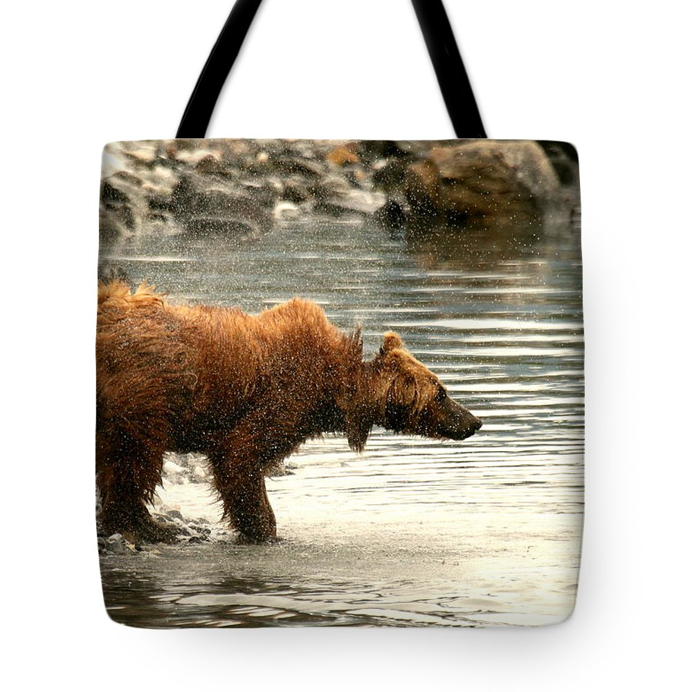 Bears Tote Bag featuring the photograph Shake It Off by Myrna Bradshaw
