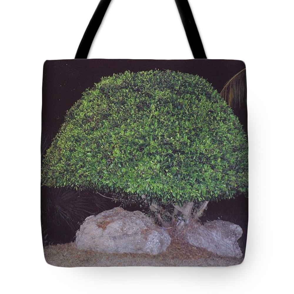 Cape Coral Beach.hand Shaped. Tote Bag featuring the photograph Shaped Tree by Robert Floyd