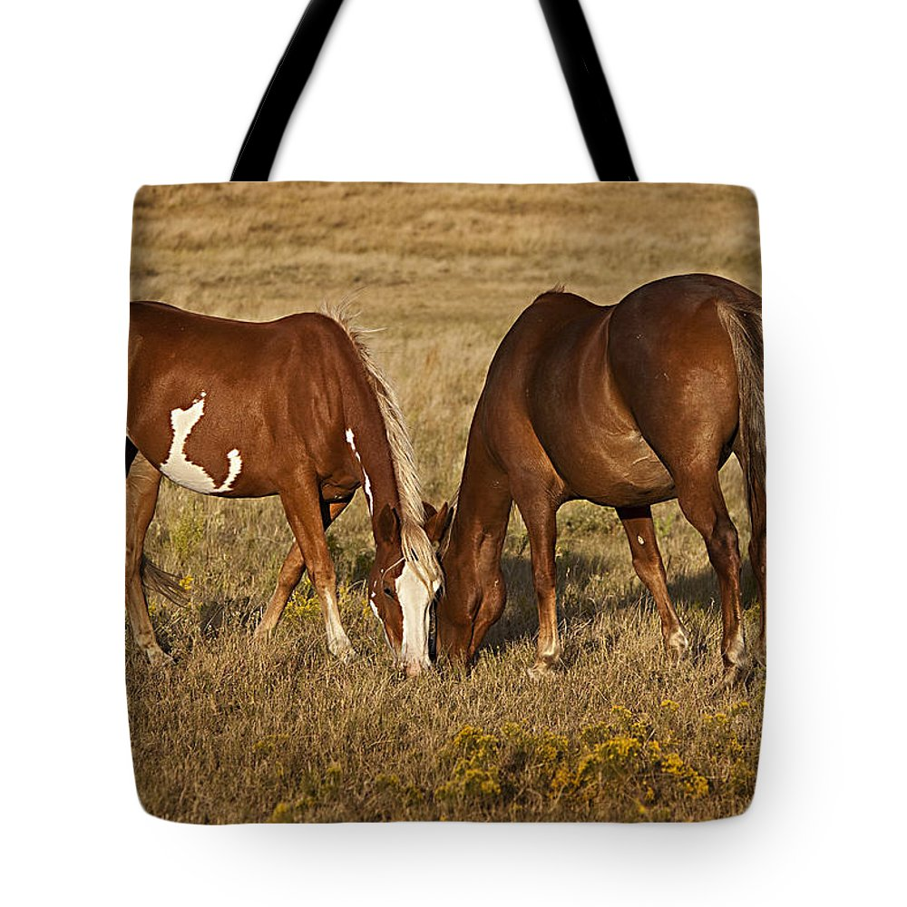 Horse Tote Bag featuring the photograph Sharing by Jack Milchanowski