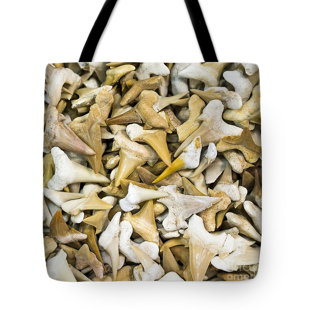 Gems Tote Bag featuring the photograph Sharks Teeth by Steven Ralser