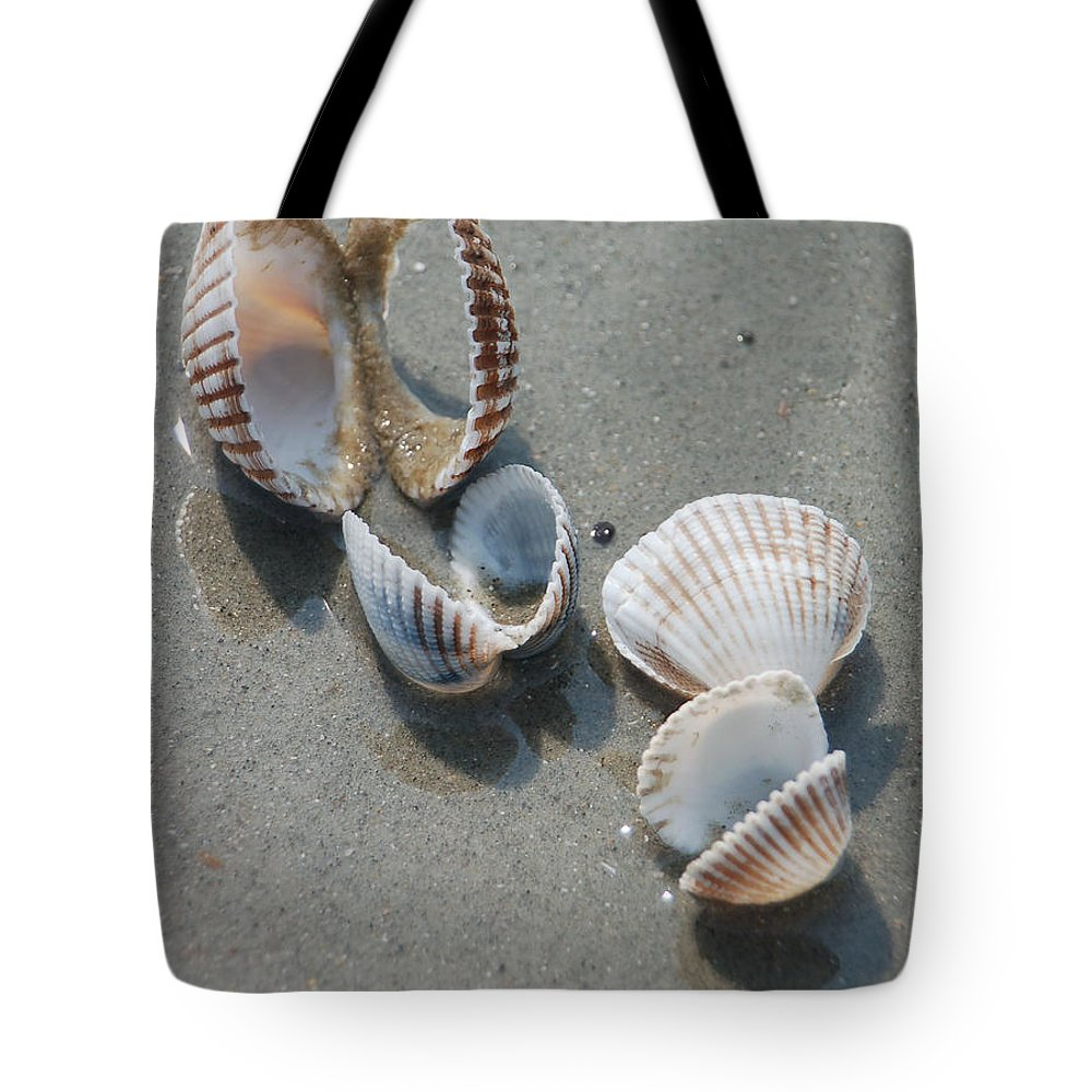 Sea Shell Tote Bag featuring the photograph She Sells Sea Shells by Suzanne Gaff