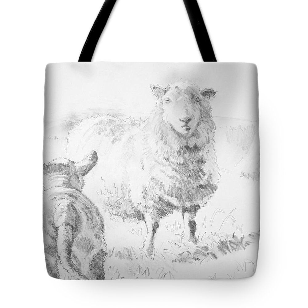 Sheep And Lamb Drawing Tote Bag For Sale By Mike Jory