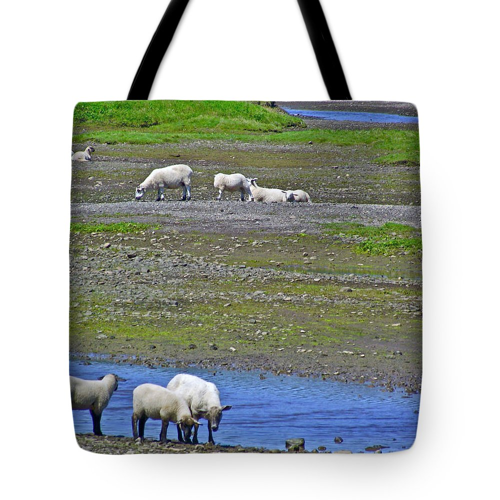 Sheep In Branch Tote Bag featuring the photograph Sheep In Branch-nl by Ruth Hager