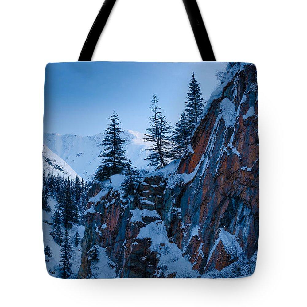 Cliff Tote Bag featuring the photograph Sheer Walls by Nikolai Martusheff