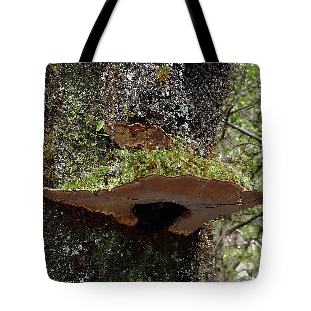 Mushroom Tote Bag featuring the photograph Shelf Mushroom With Moss by Pamela Walton