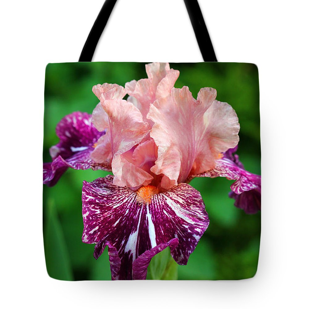 Iris Tote Bag featuring the photograph She's A Lady by Debbie Oppermann