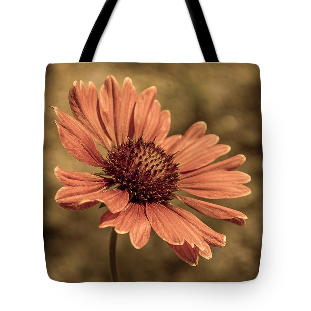 Gaillardia Pulchella Tote Bag featuring the photograph Shining by Tex Wantsmore
