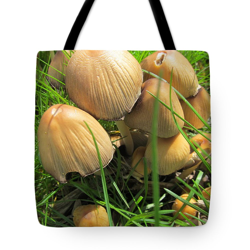 Mushroom Tote Bag featuring the photograph Shitakes by Tina M Wenger