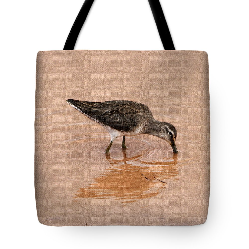 Shore Bird At Whitewater Draw Tote Bag featuring the photograph Shore Bird At Whitewater Draw by Tom Janca