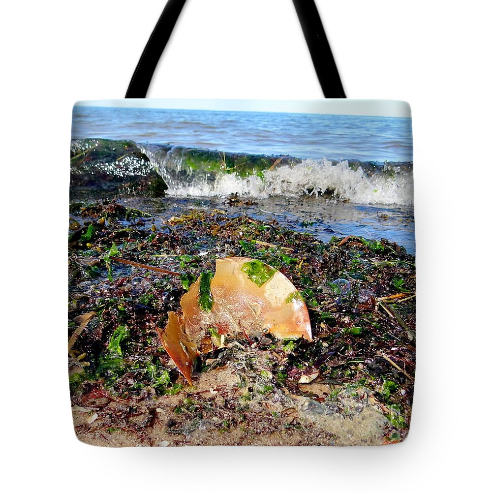 Nature Tote Bag featuring the photograph Shore Scene by Ed Weidman