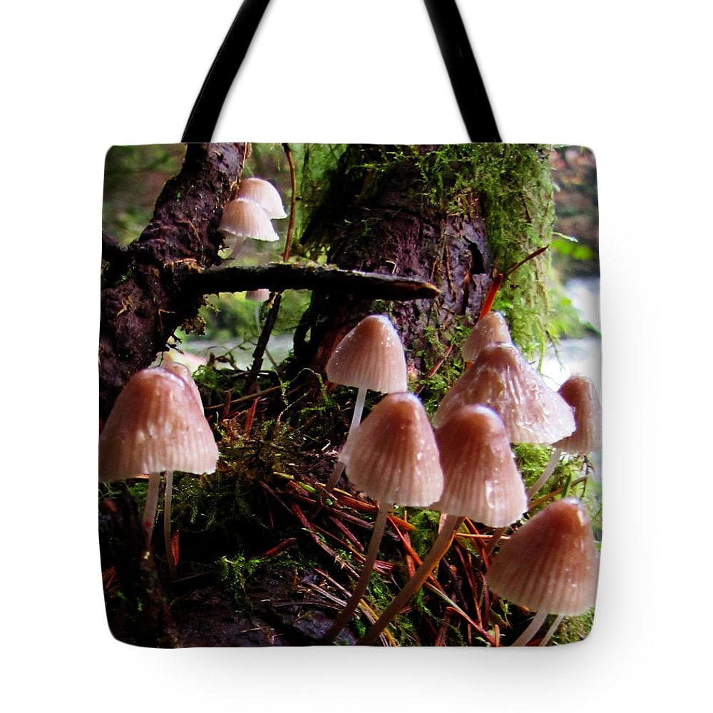 Nature Tote Bag featuring the photograph Shroomy Shrooms Mushroom Culture by Ron Tackett