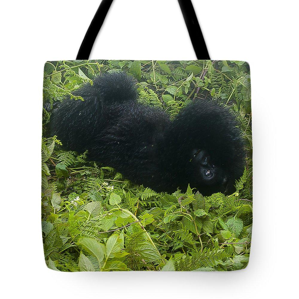 Rwanda Tote Bag featuring the photograph Shy Baby by Paul Weaver