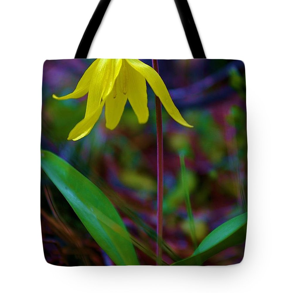 Flowers Tote Bag featuring the photograph Shy Beauty by Jeff Swan