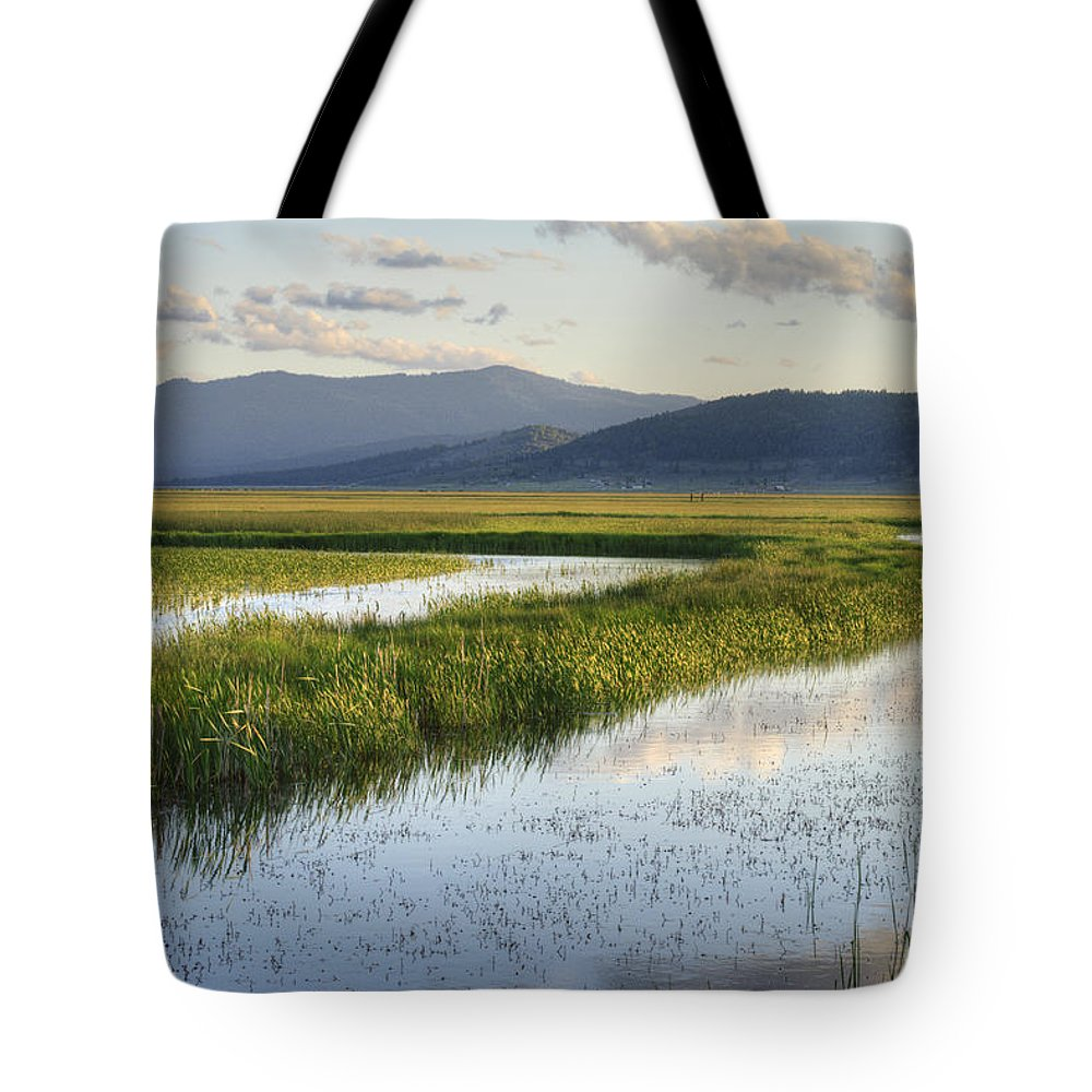 Wetlands Tote Bag featuring the photograph Sierra Valley Wetlands by Dianne Phelps