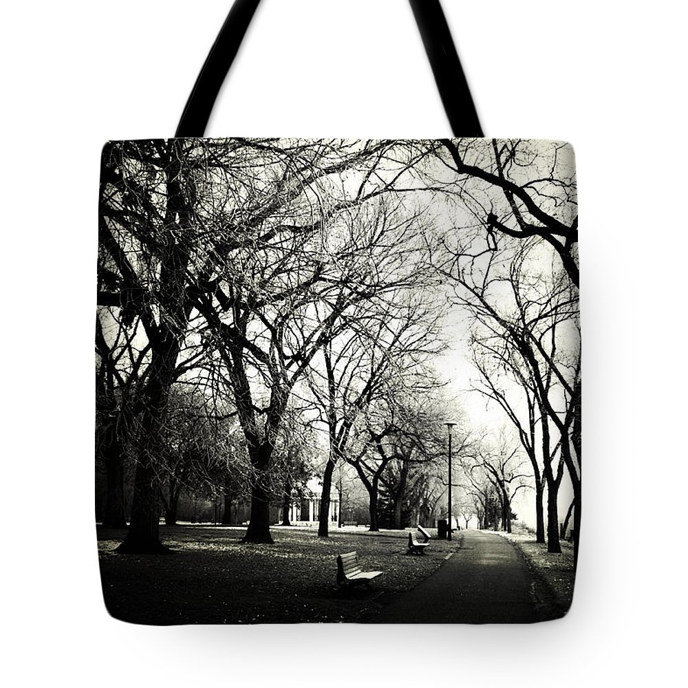 Trees Tote Bag featuring the photograph Silence Of Steps by The Artist Project