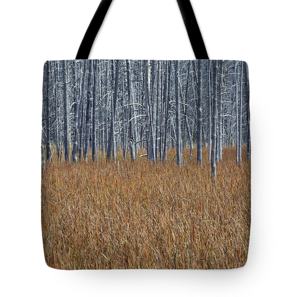 Yellowstone Tote Bag featuring the photograph Silent Sentinels Of Autumn Grasses by Bruce Gourley