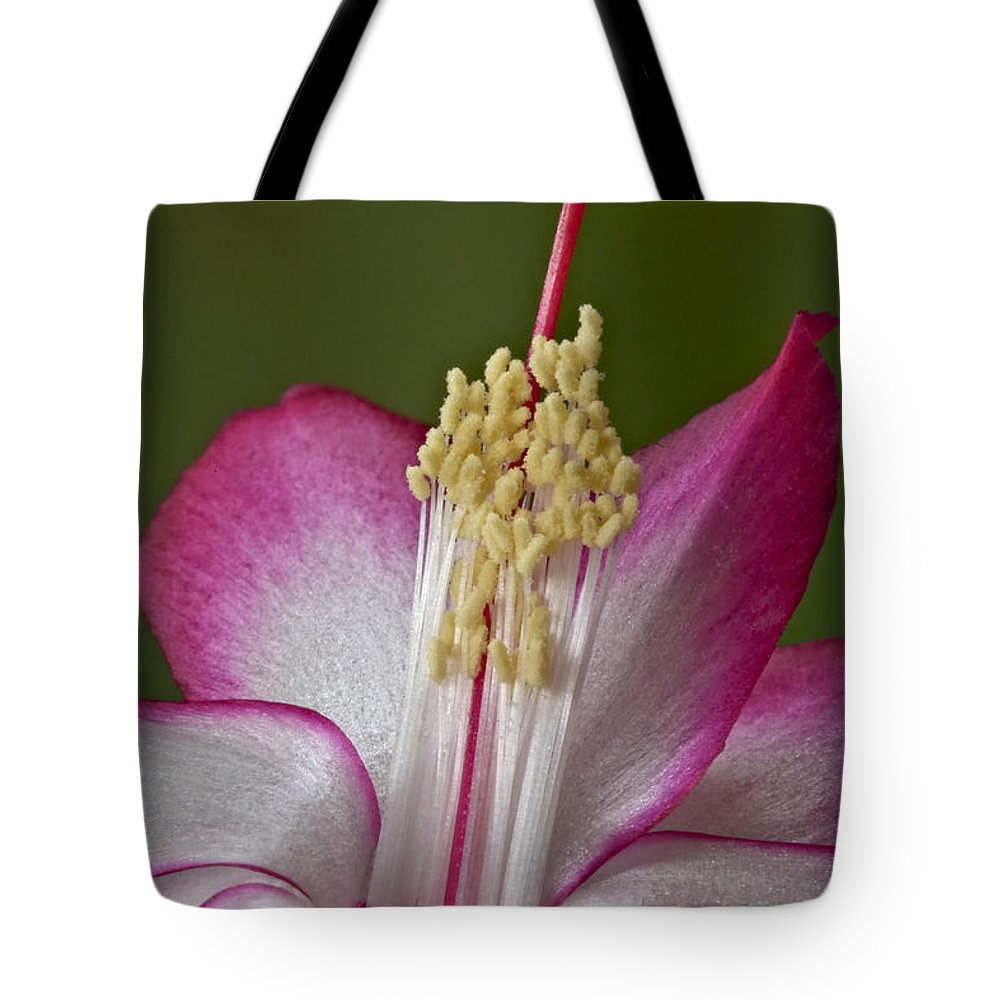 Delicate Tote Bag featuring the photograph Silk Petals by Susan Candelario