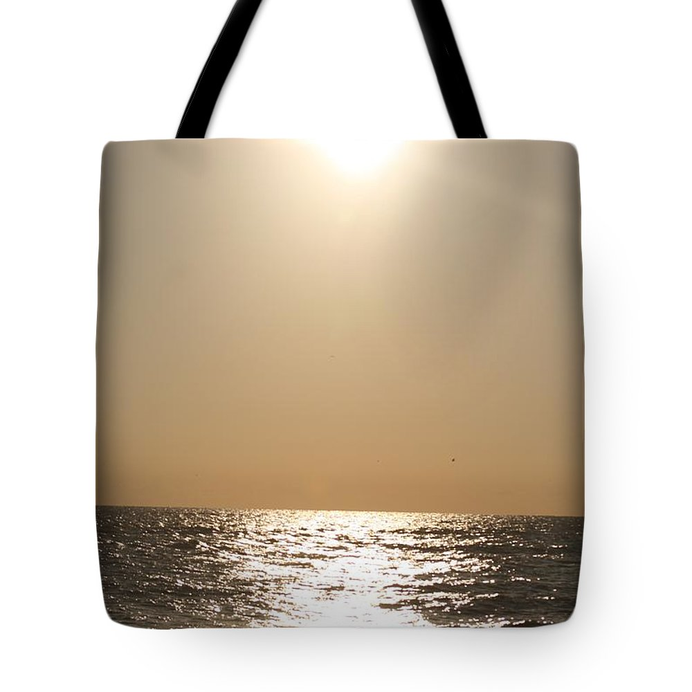 Silver Tote Bag featuring the photograph Silver And Gold by Nadine Rippelmeyer