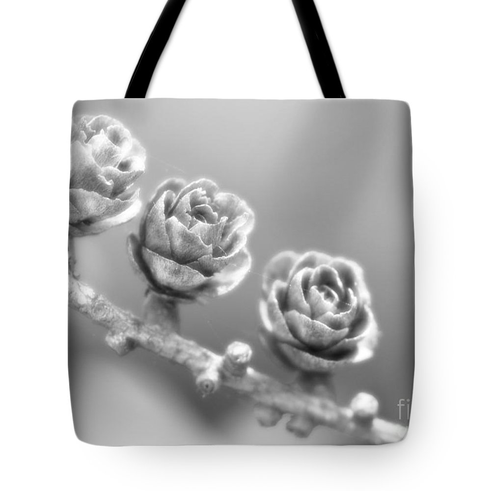 Festblues Tote Bag featuring the photograph Silver Lining.... by Nina Stavlund