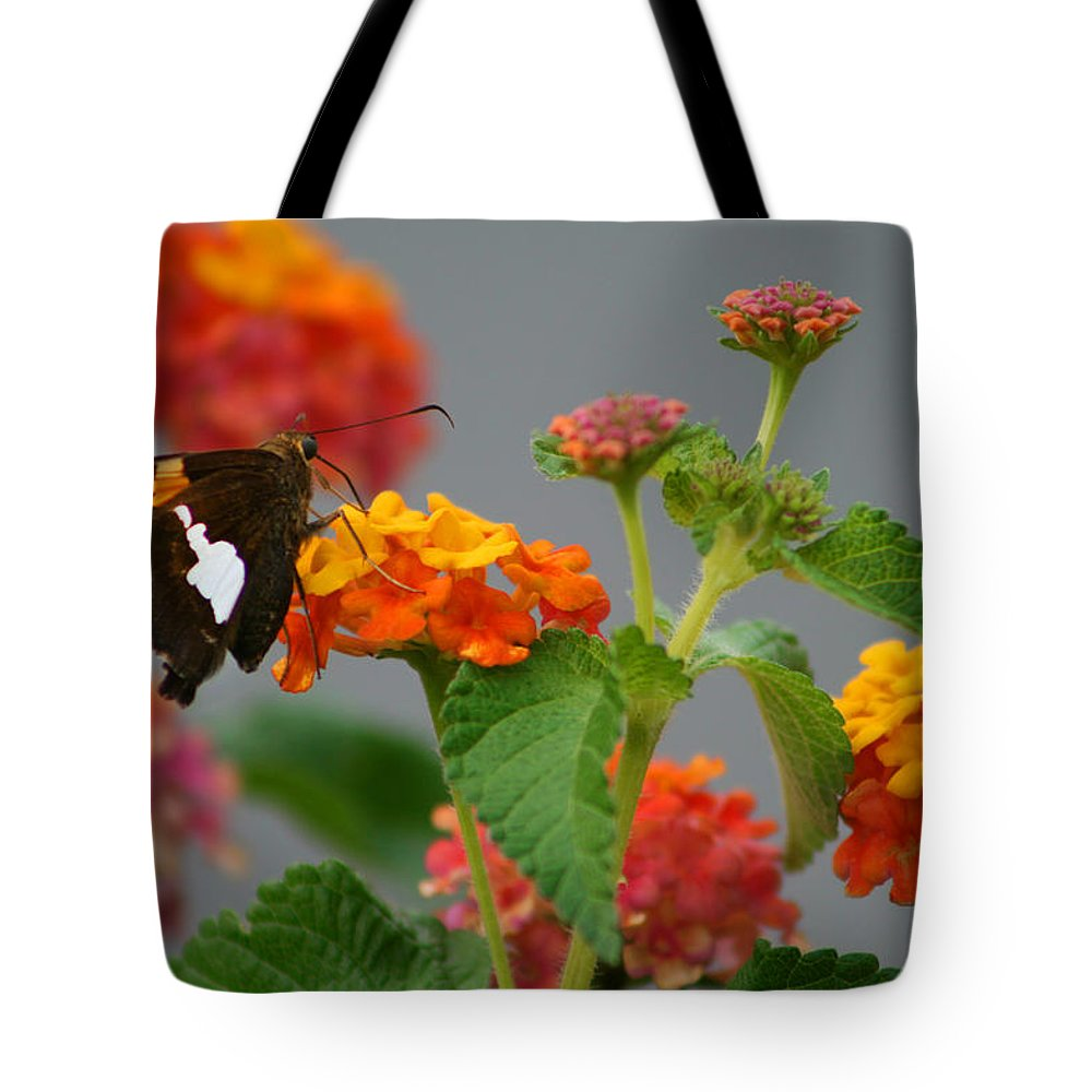 Silver-spotted Skipper Tote Bag featuring the photograph Silver-spotted Skipper Butterfly On Lantana Blossoms by Kathy Clark