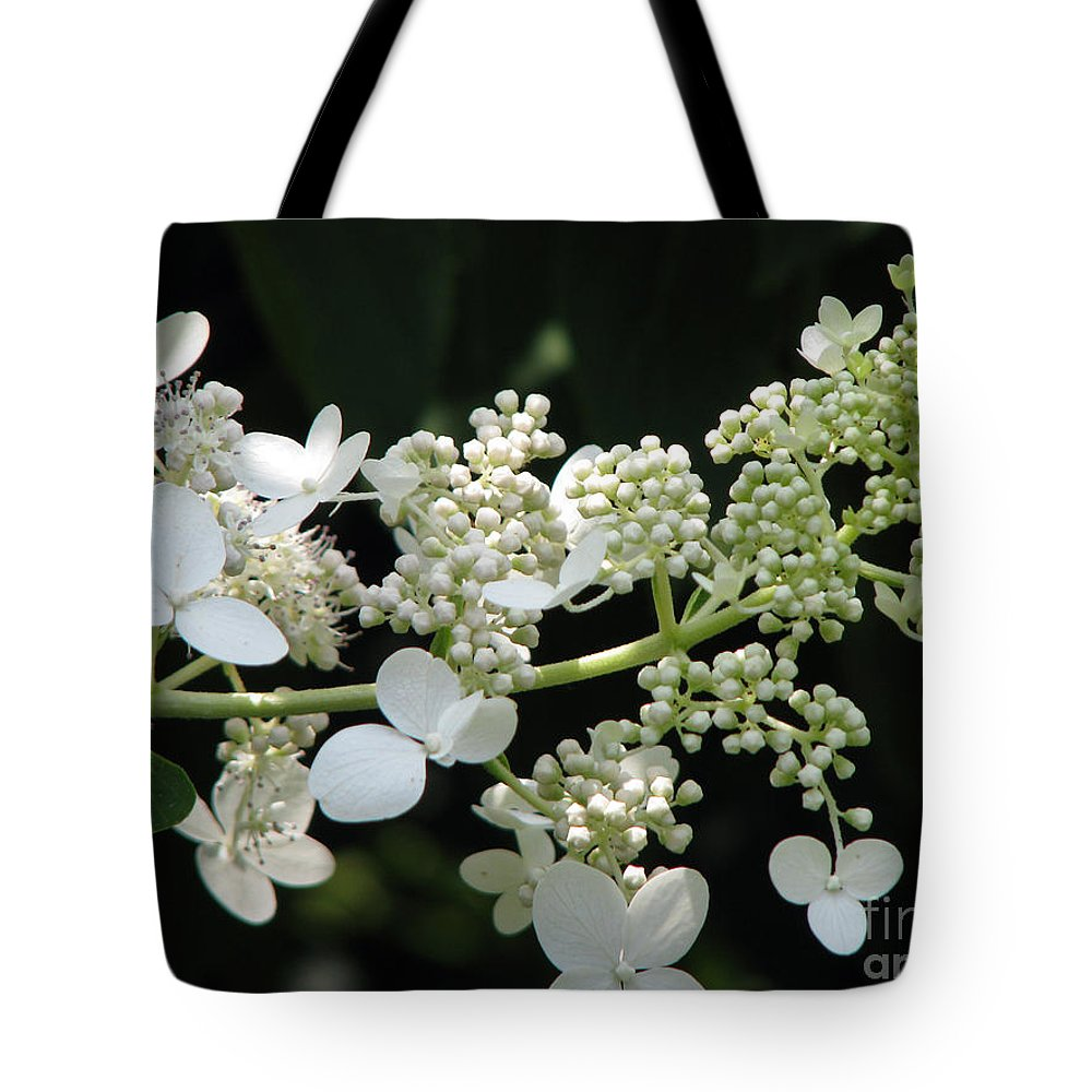 Hydrangea Tote Bag featuring the photograph Simply by Amanda Barcon