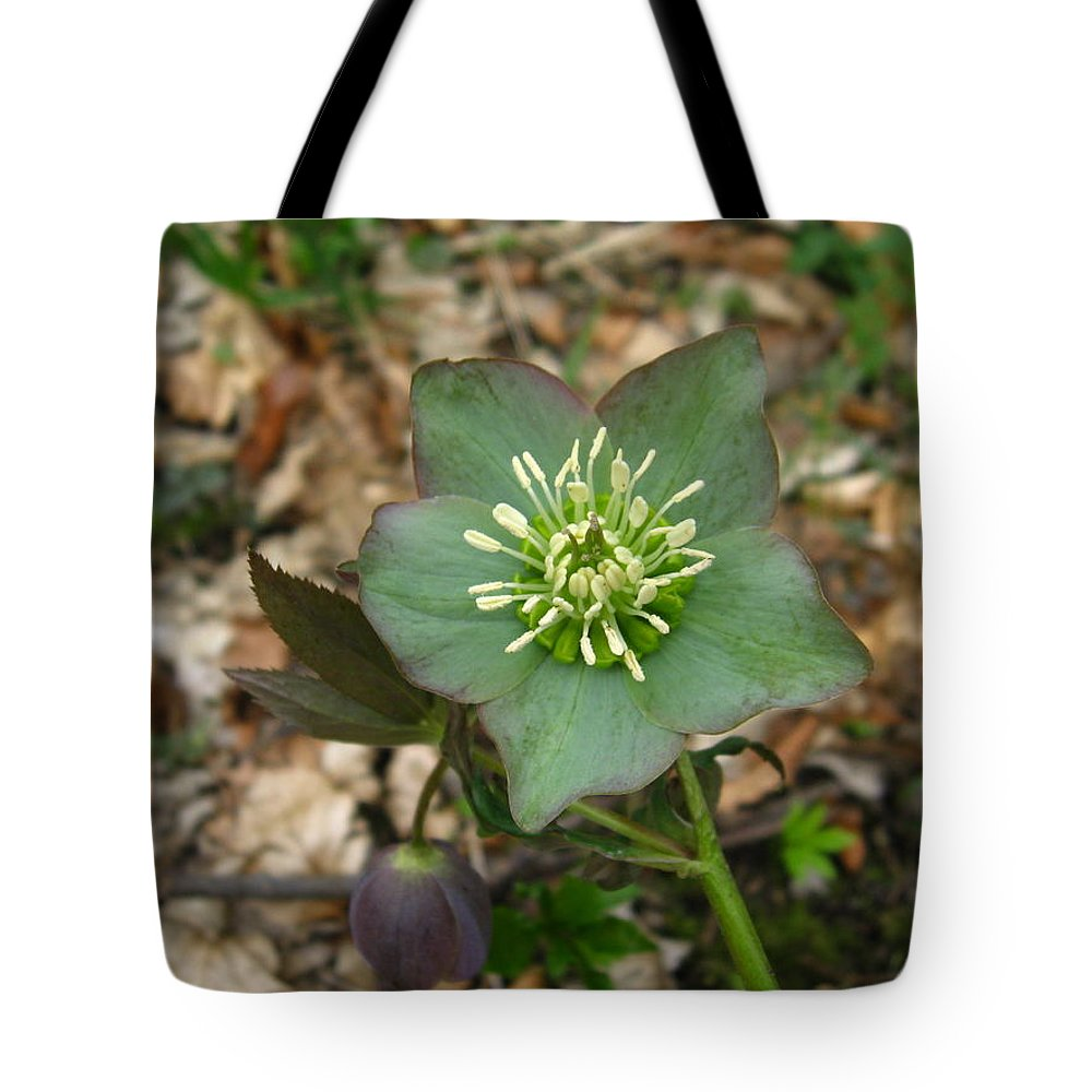 Mountain Flower Tote Bag featuring the photograph Simply Green by Alina Cristina Frent