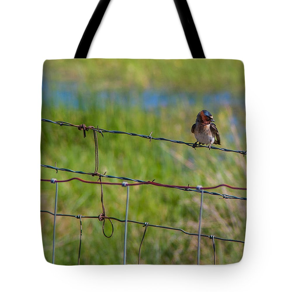 Gigimarie Tote Bag featuring the photograph Singing by Gina Herbert