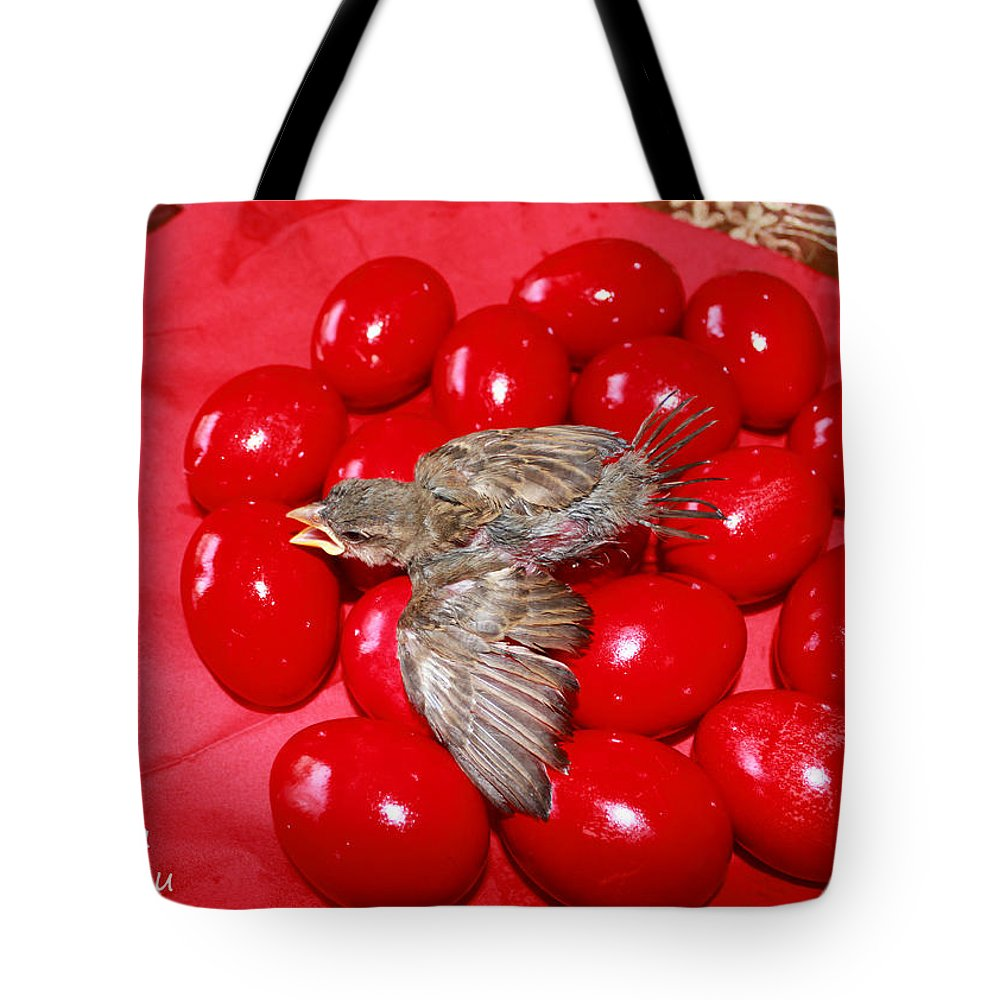 Augusta Stylianou Tote Bag featuring the photograph Singing Over Red Eggs by Augusta Stylianou