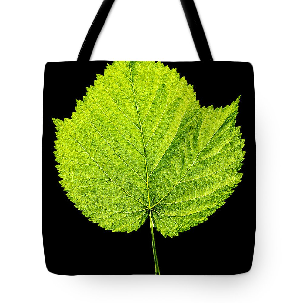 Raspberry Tote Bag featuring the photograph Single Leaf From Raspberry Bush by Donald Erickson